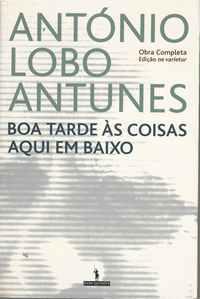 BOA TARDE ÀS COISAS AQUI EM BAIXO       António Lobo Antunes        2003     1ª Edição